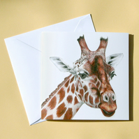 Greetings Card - Blank - Giraffe