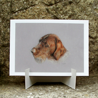 Wirehaired Pointer Dog Fine Art Print