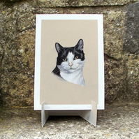 Black and White Cat - Fine Art Print