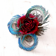 Red Silk Cabbage Rose and Peacock Feather Hair Clip