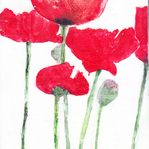 Original Acrylic Painting POPPIES - 24x18 cms