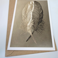 Two Feathers Greetings Card