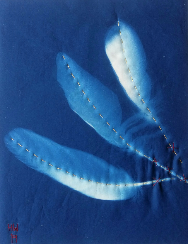 Sun Feathers II: Hand Embroidered Cyanotype Print on Fabric