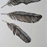Three Feathers Original Pen and Pastel Drawing