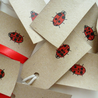 Free Postage - Ladybird Gift Tags - Set of 10