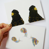 Postcard set - Twin Parrots and Three Snails