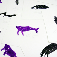 Free Postage - Mini Print Pack - Badger, Whale and Feather
