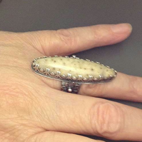 Adjustable Fossil Palm wood BIG ring