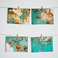 Set of Four Flower Postcards - Magnolia