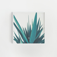 Plant Print, Kitchen Art  - Yucca Leaves