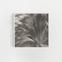 Black and White Palm Tree Print - Jungle