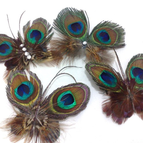Small Feather Butterflies