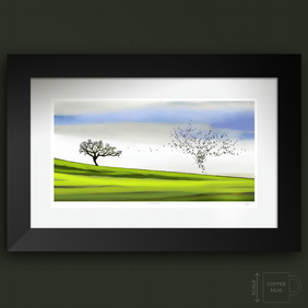 Life In Nature. Three. Large framed