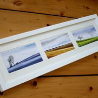 Life In Nature, framed triptych set