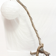Floor lamp Floor Lamp,Drift Wood Standard lamp, Drift wood Floor lamp,188cm