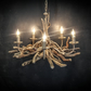Driftwood Chandelier,5 light Chandelier, Drift Wood lighting ,adjustable chain