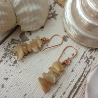 Shell Earrings Rose Gold Plated