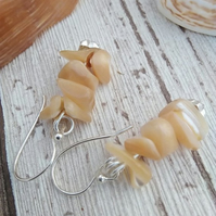 Shell Earrings Cream Drops