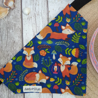 Fox Dog Bandana Over the collar