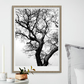 Winter Tree Fine Art Photographic Print A3 Size