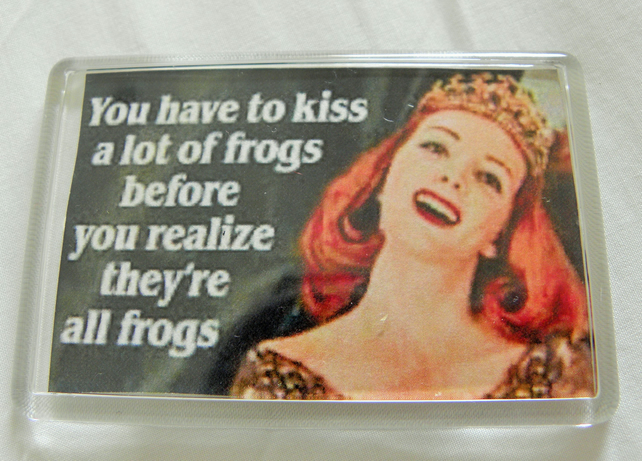 Kissing Frogs Fridge Magnet