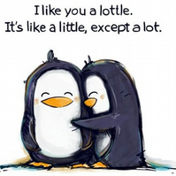 I Like You A Lottle Blank Greeting Card
