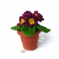 Everlasting Primrose Flower pot decoration (purple) by Lily Lily Handmade
