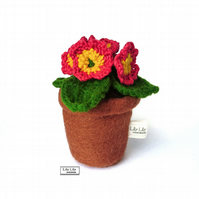 Everlasting Red Primrose Flower pot decoration by Lily Lily Handmade