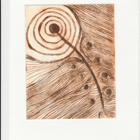 Feather - drypoint print in variable edition of 6