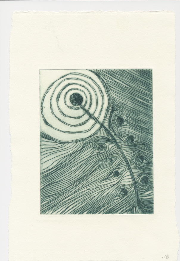 Feather - drypoint print in dark green in  variable edition of 6