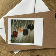 "Set of 10 mixed ""Polaroid"" style photo cards: neutrals"