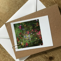 "Set of 5 mixed ""Polaroid"" style photo cards: flowers"