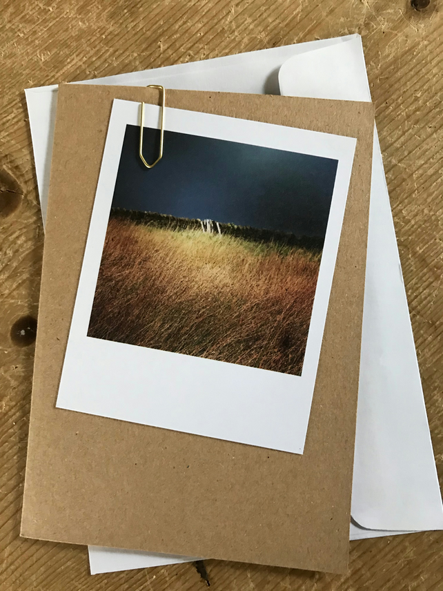 "Set of 10 mixed ""Polaroid"" style photo cards: landscapes"