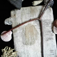 Dowsing Rod - divination divining water oil minerals ley lines witch wicca