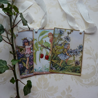GIFT TAGS ,  vintage style ,  ( set of 3 )  Flower Fairies - 'Summer mix   '