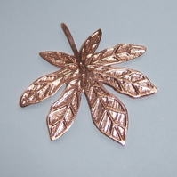 Horse chestnut leaf brooch in etched copper