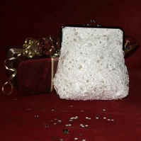 Purse cornellie lace with sequins and pearls
