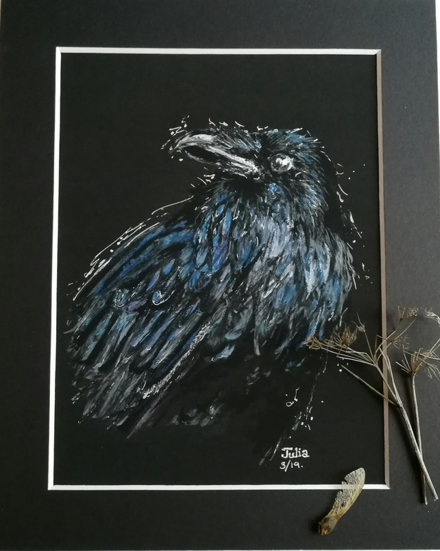 Handsome Raven original art work, quality print with mount 10 x 8 inch no.2