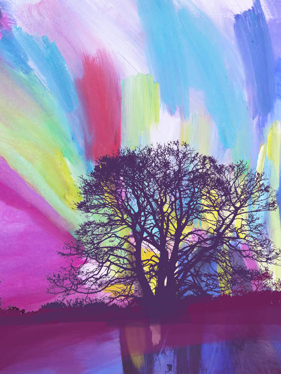 Colourful dramatic rainbow skyscape with trees.