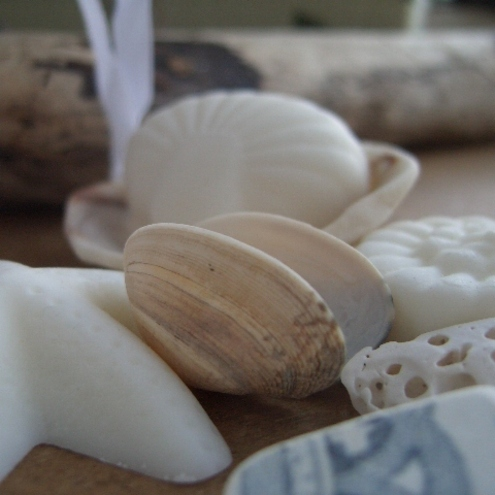 Seashore Soy Wax Melts