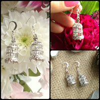 Beautiful Bird Cage Earrings with tiny weeny birds inside