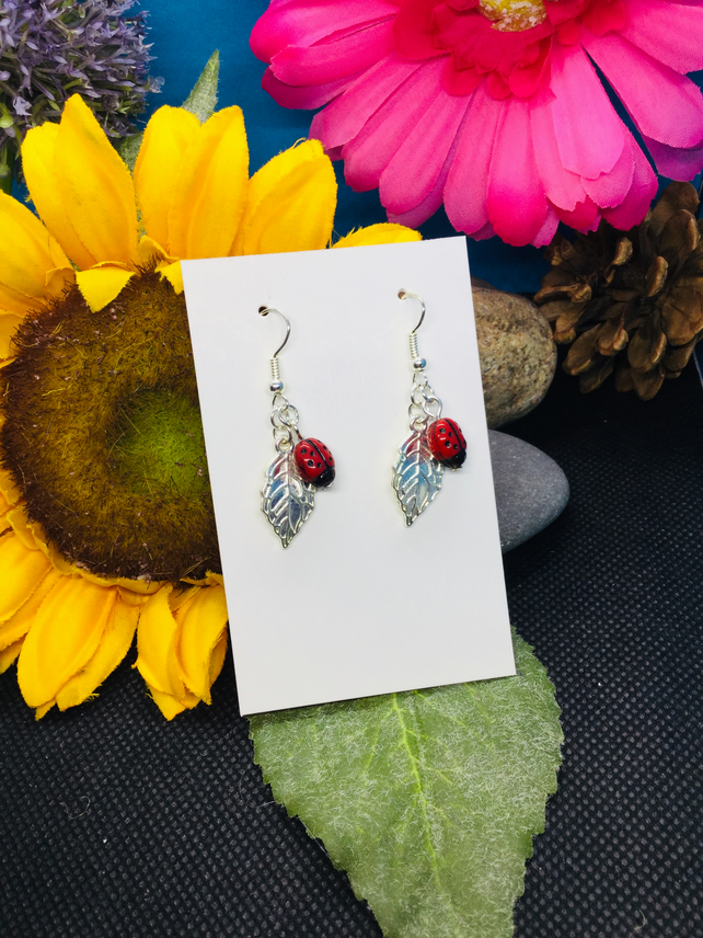 Cute ladybird earrings