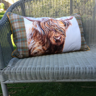 Cow cushion. Highland longhair cow pillow. Large linen and tartan cushion.