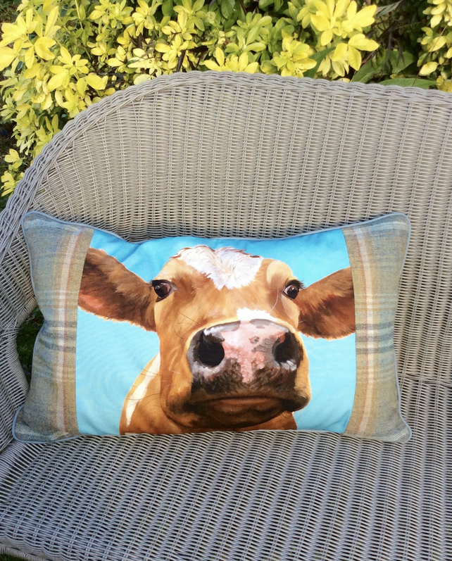 Cow cushion. Ayrshire calf pillow. FREE UK Postage. Scatter cushion.