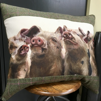Pig cushion. Piggy pillow. Extra large tartan cushion. FREE UK Postage.