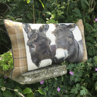 Donkey cushion. Pair of Donkeys scatter cushion. FREE UK P & P.