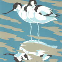 Reflection (Avocets)