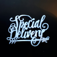 6 Tonic Die Cut Sentiments - Special Delivery