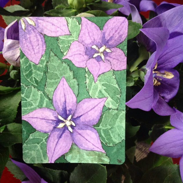 ACEO Original watercolour 'Purple flowered Pot Plant'