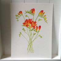 'Freesias' original watercolour painting